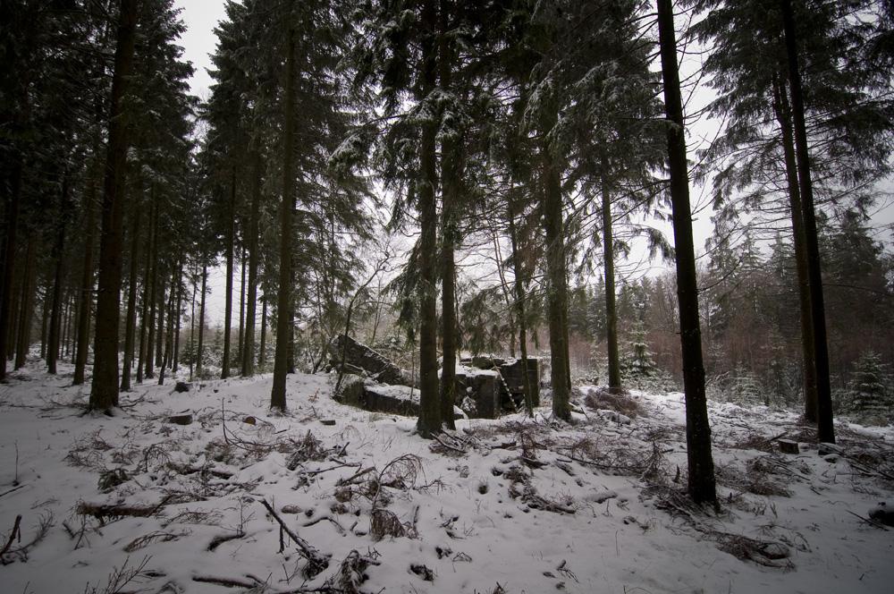 Blown up Doppel-Gruppen-Unterstand type 11 near Ormont